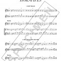 ThreeTriple-TimeHornpipes_Specimen_page1